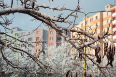 Godzsák Eszter, Tél a lakótelepen - Zima na Furči, II. kategória