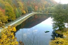 Halász Viktória (12), Csodálatos ősz - Kőkapu, II. kategória