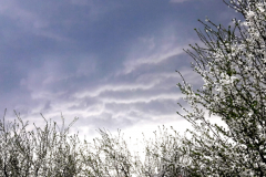 Alexander Balogh (12), Mérges felhők - Nahnevané oblaky, II. kategória